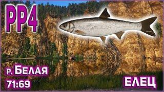 ЕЛЕЦ НА БЕЛОЙ РР4 РУССКАЯ РЫБАЛКА 4 РЕКА БЕЛАЯ ЕЛЕЦ RUSSIAN FISHING 4 BELAYA RIVER DACE