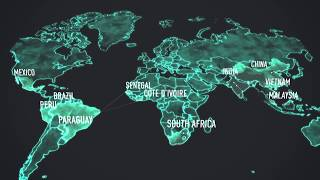 Global Platform for Sustainable Cities and the GEF
