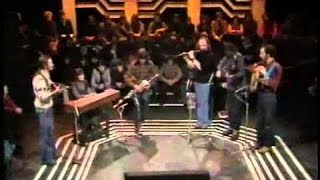 bothy band   green groves of erin and flowers of red hill TG4 ireland 1976 kieransirishmusicandsurvi