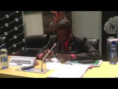 Malawi Deputy Minister on how they deal with post harvest l