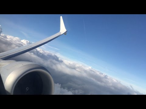 American Airlines Boeing 737 MAX 8 Takeoff From Orlando International Airport