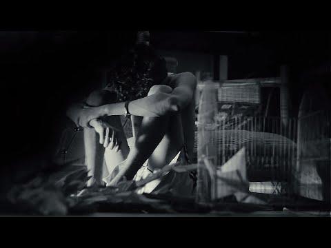 Boka pakhi By Shohojia (official music video)