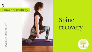 Spine recovery flow 30