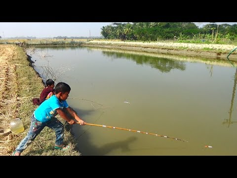 Best Fishing Video | Kids Fishing By Daily Village Life (Part-22)