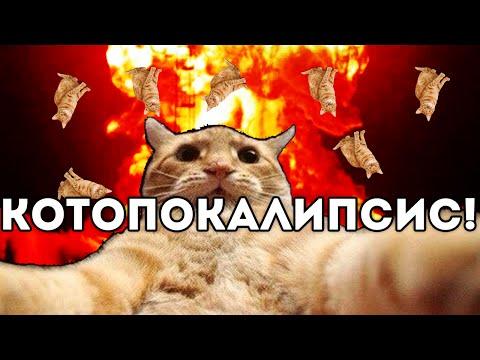 Смотреть онлайн аниме Кошачьи прихоти