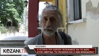 Σημαντικά στοιχεία για την ιστορία του Πελεκάνου και του Βοϊου