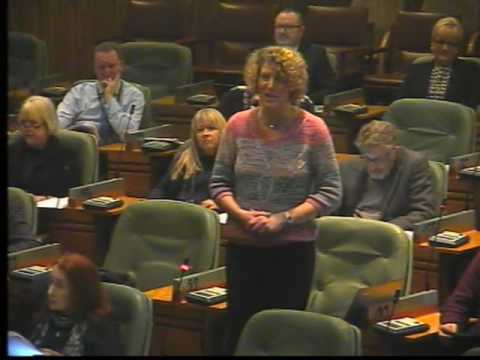 Newcastle City Council Meeting: 11 January 2017