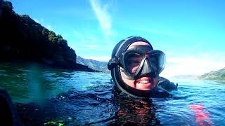 wainui diving christchurch 1st dive of the day 19-7-2018