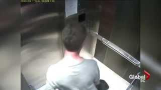 Elevator video shows man abusing dog