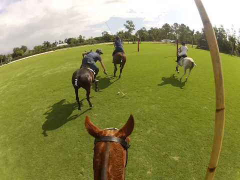 GoPro Practica: Patagones Polo Club