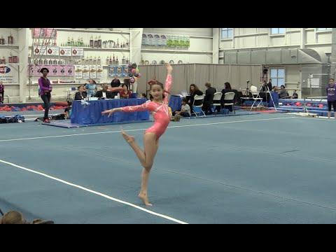 Apple classic gymnastics meet 2018