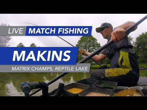 Live Match Fishing: Matrix Stillwater Champs, Makins Fishery, Reptile