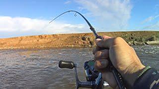ДА КАК ТАК Откуда в этой КАНАВЕ столько ЩУКИ Рыбалка на спиннинг в мае
