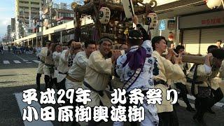 平成29年(2017) 小田原北條祭り 激走!! 御輿 小田原流