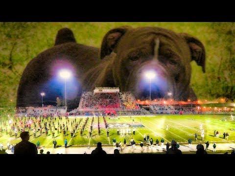 High School Football Pigskin Show 2017--Grayson vs North Gwinnett and Week 3 Playoff discussion
