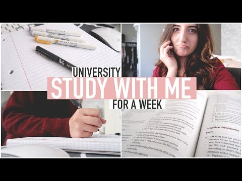 STUDY WITH ME FOR A WEEK | University Business Student