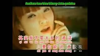 Ai Qing De Gu Shi - Cerita / Kisah Cinta