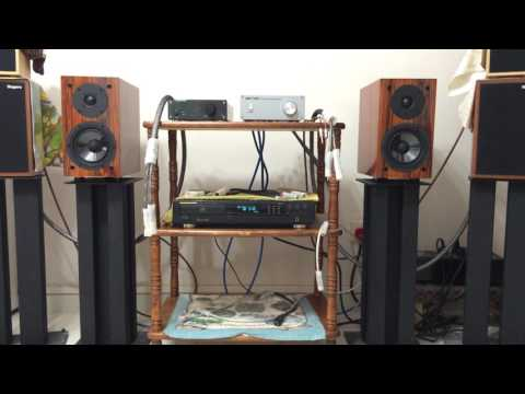 Musical Paradise MP-S1 MK2 Speakers