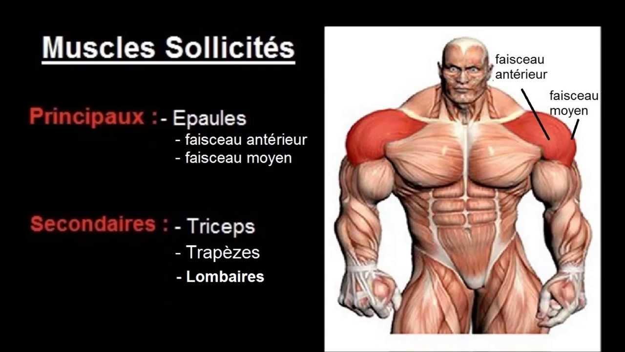 """Exercice musculation Épaules : """" Developpé militaire barre ..."""