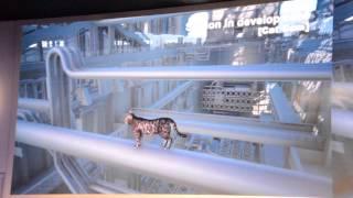 Final Fantasy 15 樂陞合作 Cat Cam 影片 - 巴哈姆特 GNN
