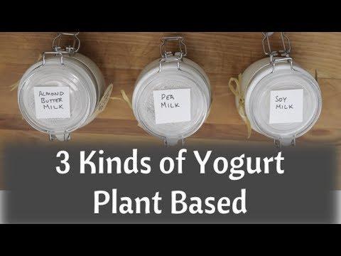 dairy-free-yogurt---almond-milk-yogurt---soy-milk-yogurt---pea-protein-milk-yogurt---vegan