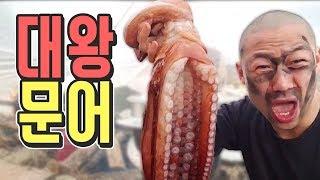 세상에서 가장 처량한 대왕문어 먹방