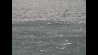 Море в Форосе при сильном береговом ветре 1 марта 2012(Непогода, холод и воет ветер. Но на это бескрайнее и бездонное море можно смотреть часами. В Форосе первый..., 2012-03-01T14:57:36.000Z)