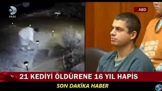 21 Kediyi öldüren caniye 16 yıl HAPİS CEZASI VERİLDİ.. EMSALDİR..