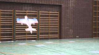 DM Indoor Kunstflug 2010  F3P-Expert Unknown  Markus Zolitsch