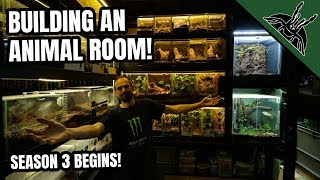 How to build AN ANIMAL ROOM!