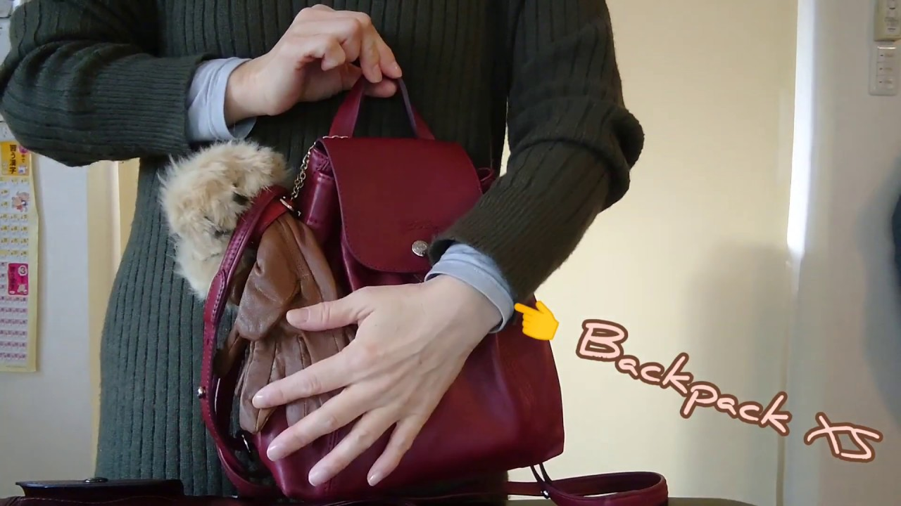 【Longchamp】Le Pliage Cuir Backpack XS レビュー