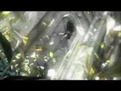 Final Fantasy VII AC - System Of A Down - Marmalade