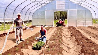 Replacing the GROCERY STORE w/ a 1500 sq ft GREENHOUSE GARDEN