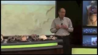 Creationist student owned by Dr  Tim White