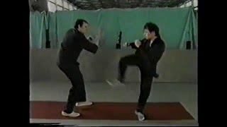 универсальная боевая система(рукопашный бой) 2