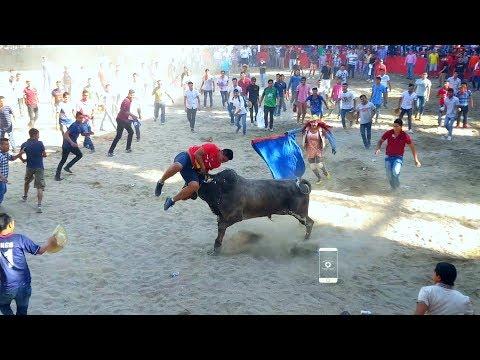 pendon 2018 zumpango del rio, GUERRERO( parte 2) plaza de toros