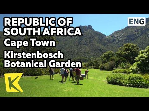 【K】South Africa Travel-Cape Town[남아공 여행-케이프타운]커스텐보쉬 자연식물원/Kirstenbosch Botanical Garden/Mount Table