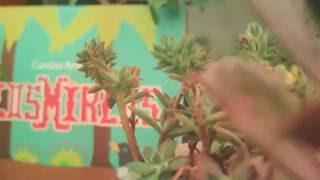 Baixar Los Mirlos: Cumbia Amazónica (Versión: Vinilo)