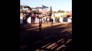 Fiestas del Sauz 2014