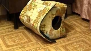 Кошачий домик - перекати-пол