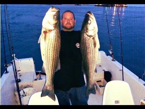 "Todd ""BOSSMAN"" Mossman - Striped Bass Absecon Inlet, NJ"