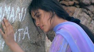 Shivamani Telugu Movie || Climax Scene || Nagrajuna, Rakshita, Asin