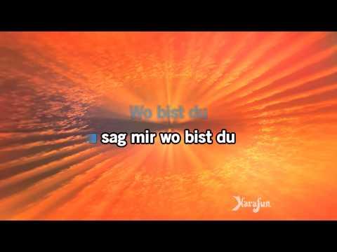Karaoke Wahnsinn - Wolfgang Petry *