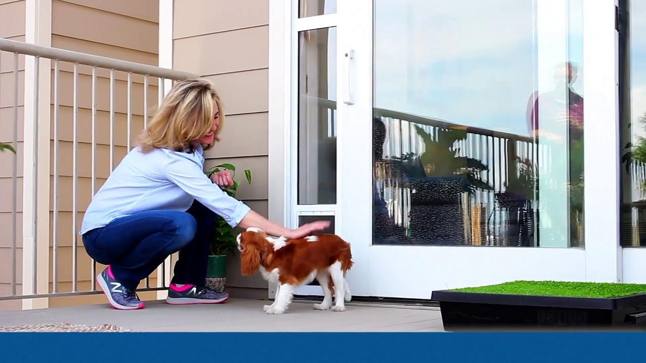 how to install the petsafe sliding glass door