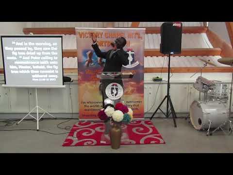 Manifesting God's Glory by Fruitfulness by Pastor (Dr) Olubisi Ige