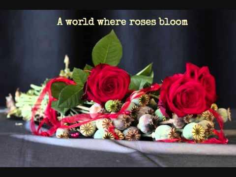 La Vie En Rose (Lyrics) - Cristin Milioti