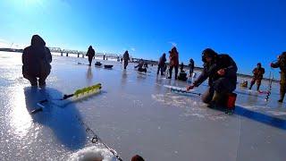 ЗЛЫЕ ПОКЛЕВКИ СУДАКА НА БАЛАНСИР рыбалка зимой 2020