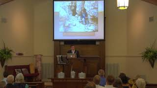 Science and Creation - Dead Sea Scrolls