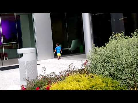Ani running around at MountainView office