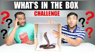 WHAT\'S IN THE BOX CHALLENGE | Viwa Brothers